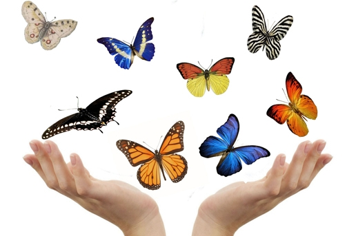 kindergraf vlinder
