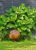 waterurn in uw tuin