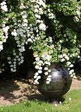 waterurn tuin